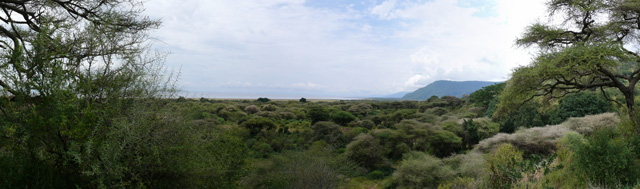 Parc national du lac de Manyara