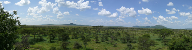 Plaines du Serengeti, vues du Lobo wildlife lodge